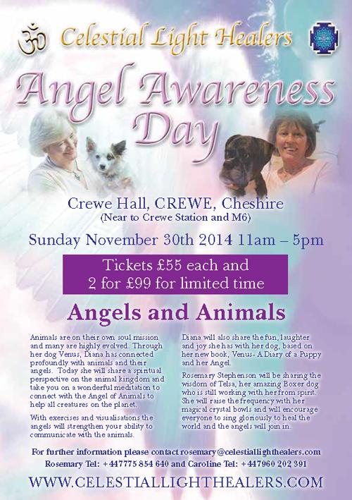 angel_awareness_day_2014