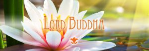 buddha_web