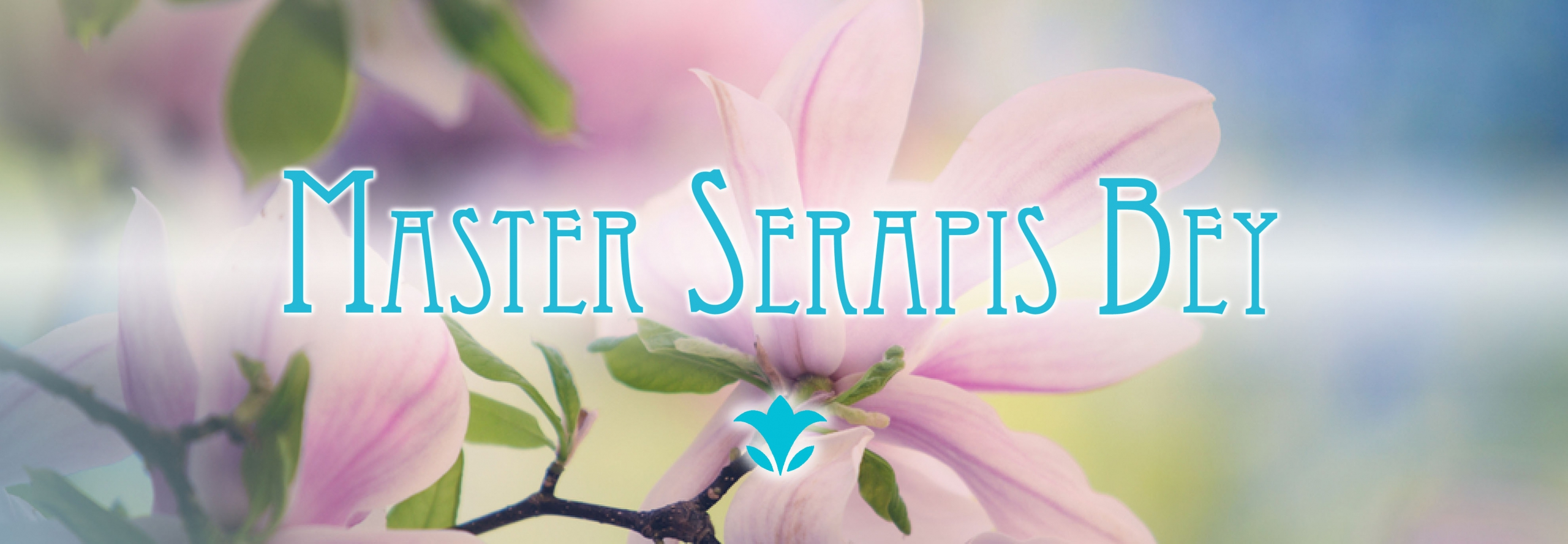 serapis_bey_web (1)
